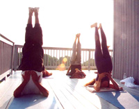 Shoulder Stand Group